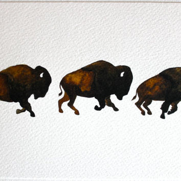 Bison Run - Watercolor Painting - Large Archival Print - 8x10 Buffalo