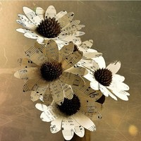 Two Dozens Daisies Made of Vintage Music Sheets | AccentsandPetals - Wedding on ArtFire