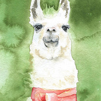 Llama Watercolor Painting Fine Art Print 5 x 7
