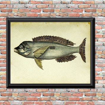 Fish Art Print Marine Animal Nautical Decor Sea Bream Watercolor Bathroom Home Wall Decor Antique Style Fishing Digital Printable