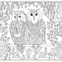 Owls Colouring Page (Downloadable page)