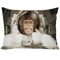 Thumbs Up Astronaut Monkey