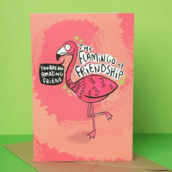 The Flamingo of Friendship Funny Happy Birthday Card FREE SHIPPING