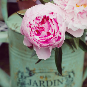 Pastel Pink Peony Photograph, Flowers Photo, Mint, Shabby Chic, Dreamy, Cottage Decor, Jardin, Garden, Peonies, Paris Roses,Nature Print