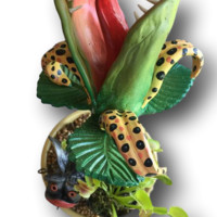 Venus Flytraps - Fish With Attitude by Mike Quinn