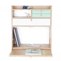 Gaston wall desk, green-white