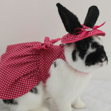 Pink  polka dot  bunny harness dress with matching hat. . pink polkadot print fabric. Made to order