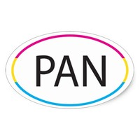 Pan Pansexual LGBT Pride Oval Sticker