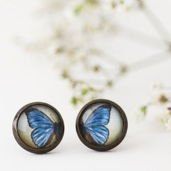 Morpho Butterfly  Nickel Free Antique Brass Stud by LaPetiteBoheme