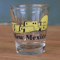 New Mexico Indian Ruins Desert Scene Clear Shot Glass