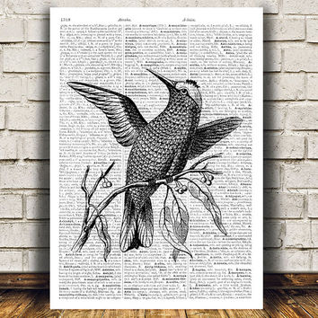 Bird print Hummingbird poster Animal art Dictionary print RTA493