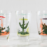Set of Six Blakely Oil Arizona Cactus Tumbler Glasses by Liquorary