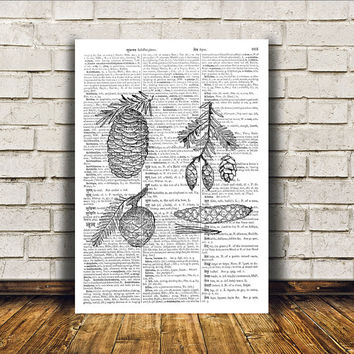 Pine cone poster Dictionary print Wall decor Nature art RTA91