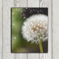 Dandelion photo print Green white Dandelion decor Home wall decor Printable Flower Bedroom poster art Office decor 10x8 INSTANT DOWNLOAD