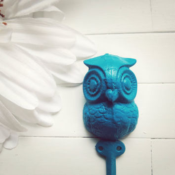 Teal Home Decor / Iron Owl Hook / Owl Decor / Wall Hanging Hook / Shabby Chic Decor /Cottage Decor / Woodland / Fixture / Key Hook / Nursery