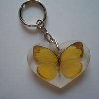 Real Asian Butterfly Key Ring (Lemon Emigrant) Insect Taxidermy Entomology Collectables Key Chain