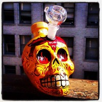 Kah Tequila Day of the Dead Bong!!
