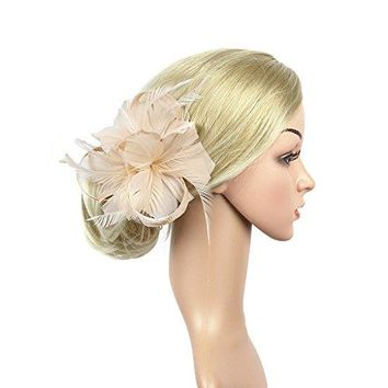 LATIMOON Sinamay Fascinators Feather Flower Derby Hat Pillbox Party Hats with Veil for Women