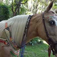 Blue Tipped Twisted Dreads for Horses - Equine Mane Braided Synthetic Hair -- Black with Blue Tips Dreadlocks for Horse