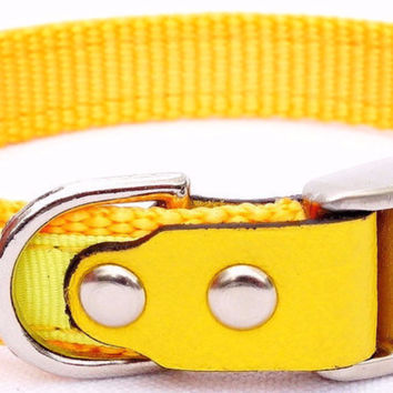 "Dog Collar: Nylon & Ribbon - 5/8"" Wide - Personalized - Sunflower and Yellow"