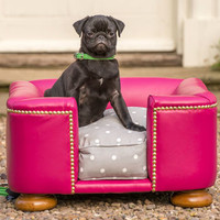 Contemporary Leather Tetford Chesterfield Dog Bed