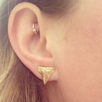 Shark Tooth Stud Earrings - Bronze Cast - Sterling Silver Posts