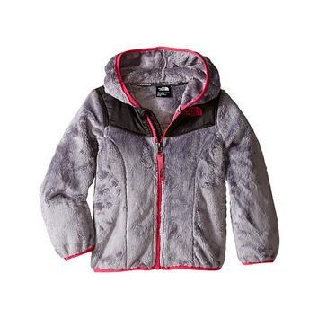 The North Face Kids Oso Hoodie (Toddler) Metallic Silver - Zappos.com Free Shipping BO