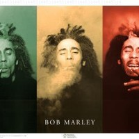 Bob Marley Poster Print, 36x24 Collections Poster Print, 36x24 Poster Print, 36x24:Amazon:Home & Kitchen