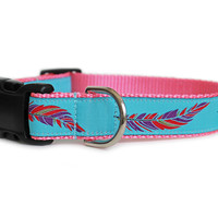 Colorful Feathers Dog Collar