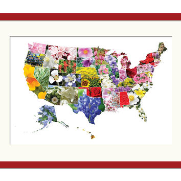 American States Flowers Map Art Print State Flower United Geography Travel