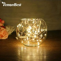 LED Copper Wire String Wedding Decoration Light 8 Modes Auto Timing Function Fairy Lights Indoor/Outdoor RGB/ Warm White