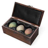 Collectible Dragon Egg Box with Eggs