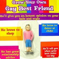 Grow Your Own Gay Best Friend