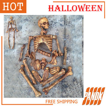 19Pcs Rotten Skeleton Halloween Skull Props Halloween Skeleton Decorations Haunted house Plastic Realistic Skull head Skeleton