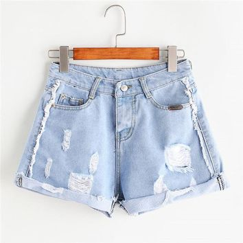 Roller Distressed Shorts
