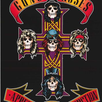 Guns N' Roses Appetite for Destruction Poster 24x36