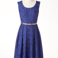 Azure lace dress | Coldwater Creek
