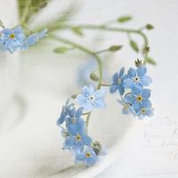 Flower photography nature photography floral wall decor forget-me-not fine fine art print wall decor bathroom decor idea wall art blue