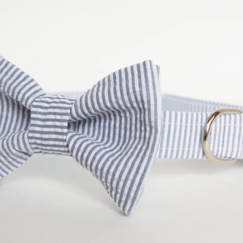 Seersucker Bowtie Dog Collar - Your Choice of Color