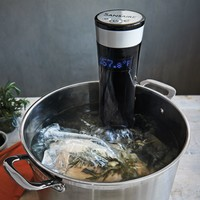 Sansaire Sous-Vide Immersion Circulator | Sur La Table