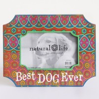 Best Dog Ever Indie Print Wood Frame