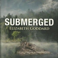 Submerged Elizabeth Goddard (Mountain Cove #4)Love Inspired Large Print Suspense