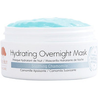 Tree Hut Hydrating Overnight Mask | Ulta Beauty