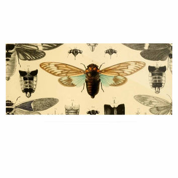 "Suzanne Carter ""Vintage Cicada"" Bugs Pattern Luxe Rectangle Panel"