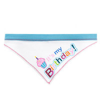 Top Paw® It's my Birthday! Dog Bandana