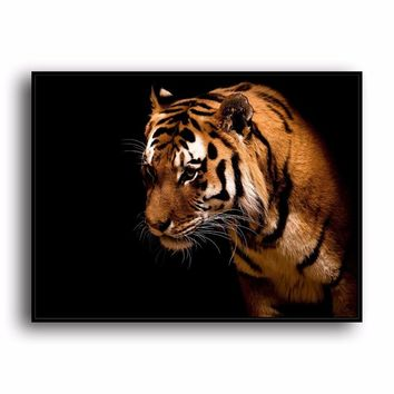 SR--0488 Bengal Tiger Natural Scenery Animal. HD Canvas Print Home decoration Living Room bedroom Wall pictures Art painting