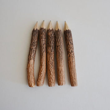 large Ombre copper hand painted graphite twig pencils (5 pencils)