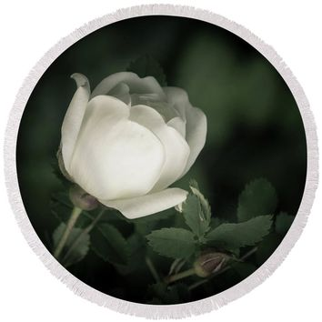 White Flower Of A Dogrose Round Beach Towel