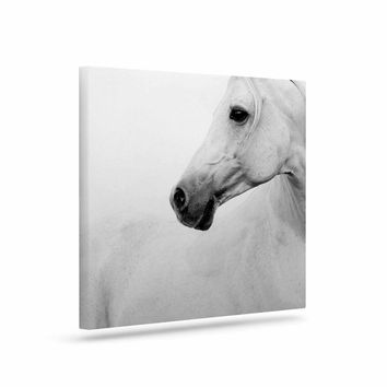 Pale Horse - White Black Animals Photography Art Canvas