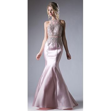 Embroidered Bodice Mermaid Prom Gown Cut Out Back Blush